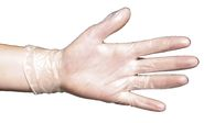 Disposable Gloves Vinyl