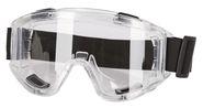 Panoramic Goggles