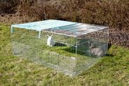 Outdoor Enclosure for Young Animals with Breakout Barrier