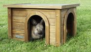 Rodent Cabin